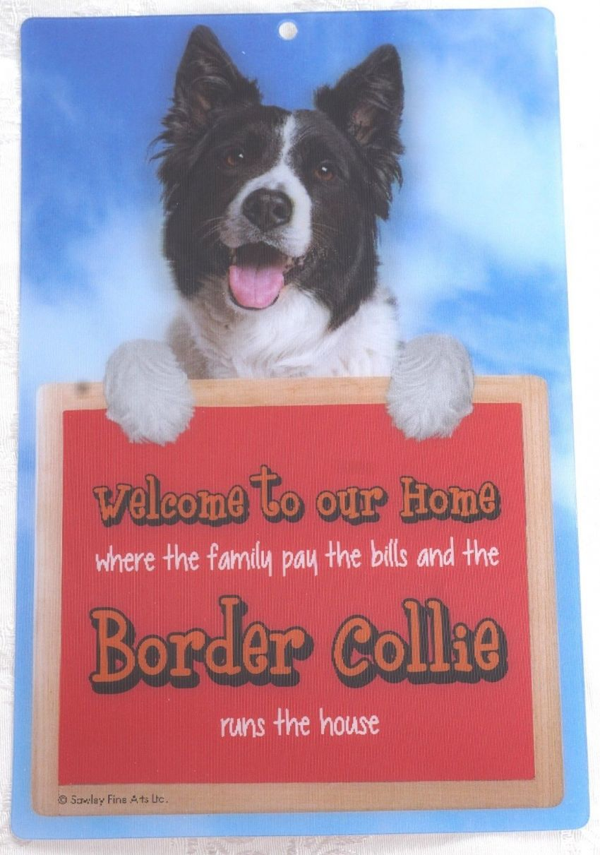 BORDER COLLIE 3D WELCOME SIGN STUNNING EYE CATCHING 23CM X 15CM DURABLE SIGN